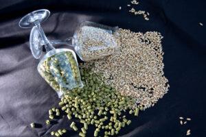 luppolo-malto-ingredienti-birra-artigianale-verona