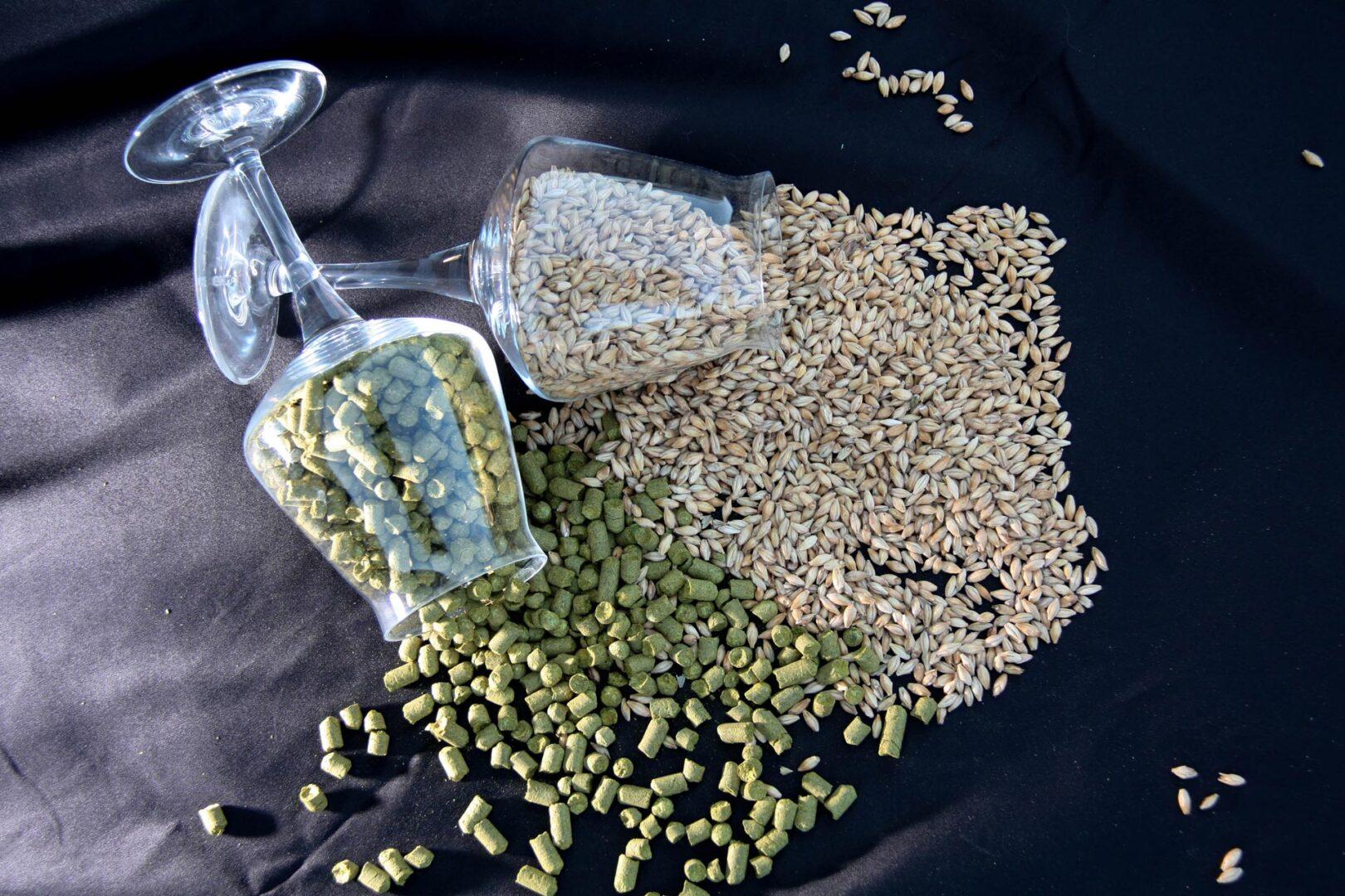 luppoli-qualita-birra-artigianale-verona